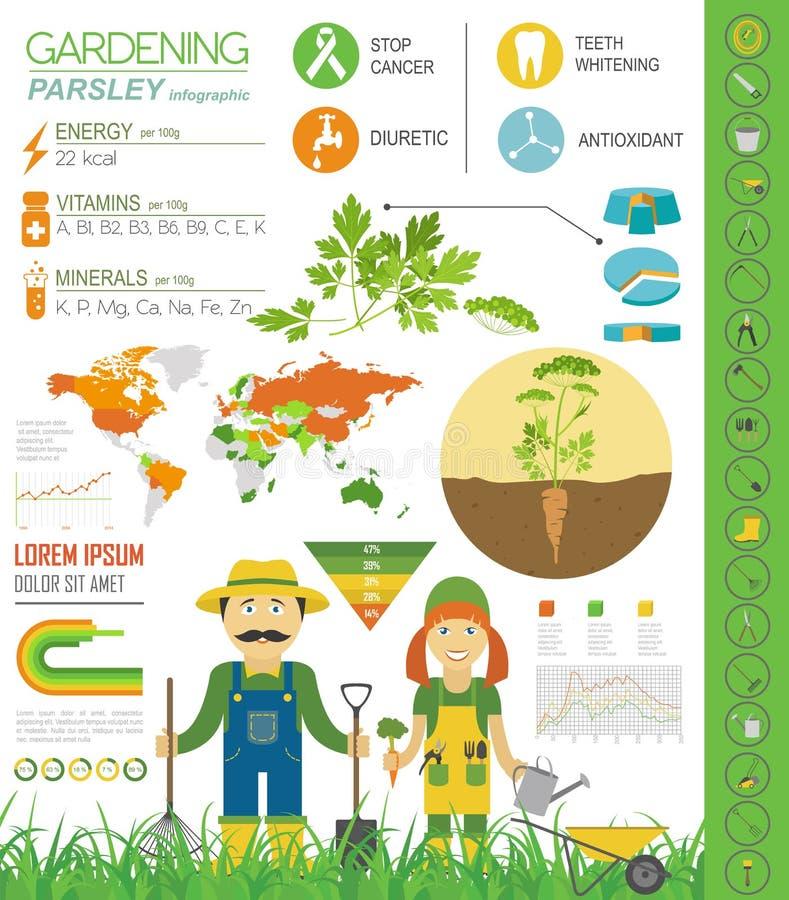 Het tuinieren het werk, infographic de landbouw Peterselie Grafisch malplaatje royalty-vrije illustratie