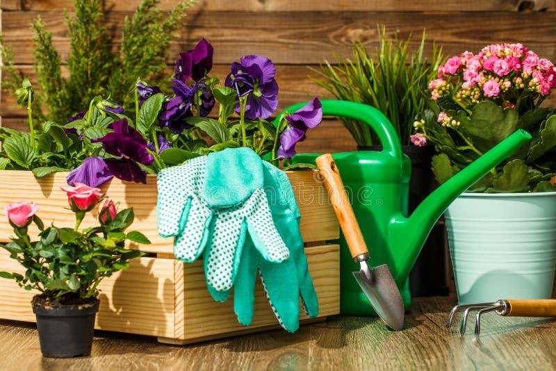 Het tuinieren Hulpmiddelen en Bloemen stock foto's