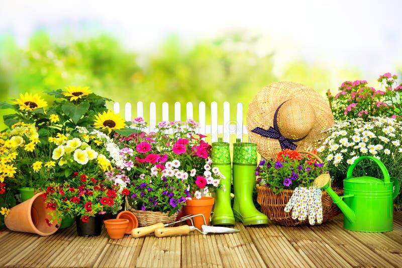 Het tuinieren hulpmiddelen en bloemen op terras i royalty-vrije stock foto's