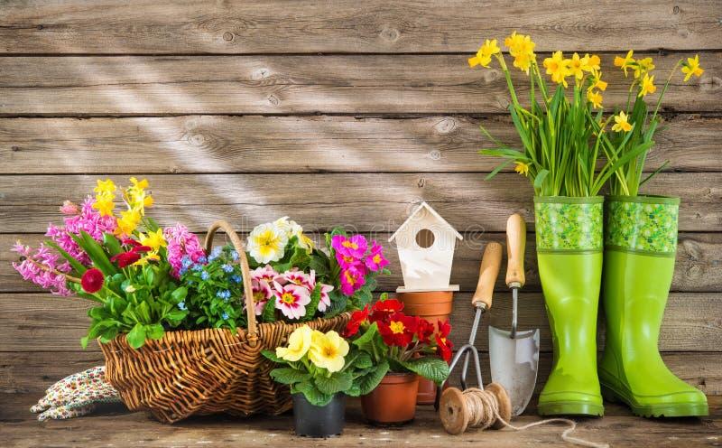 Het tuinieren hulpmiddelen en de lentebloemen royalty-vrije stock afbeeldingen