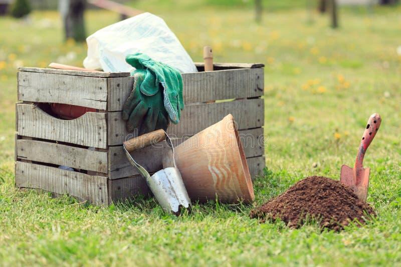 Het tuinieren nieuwe hulpmiddelen, rietdienblad stock afbeeldingen