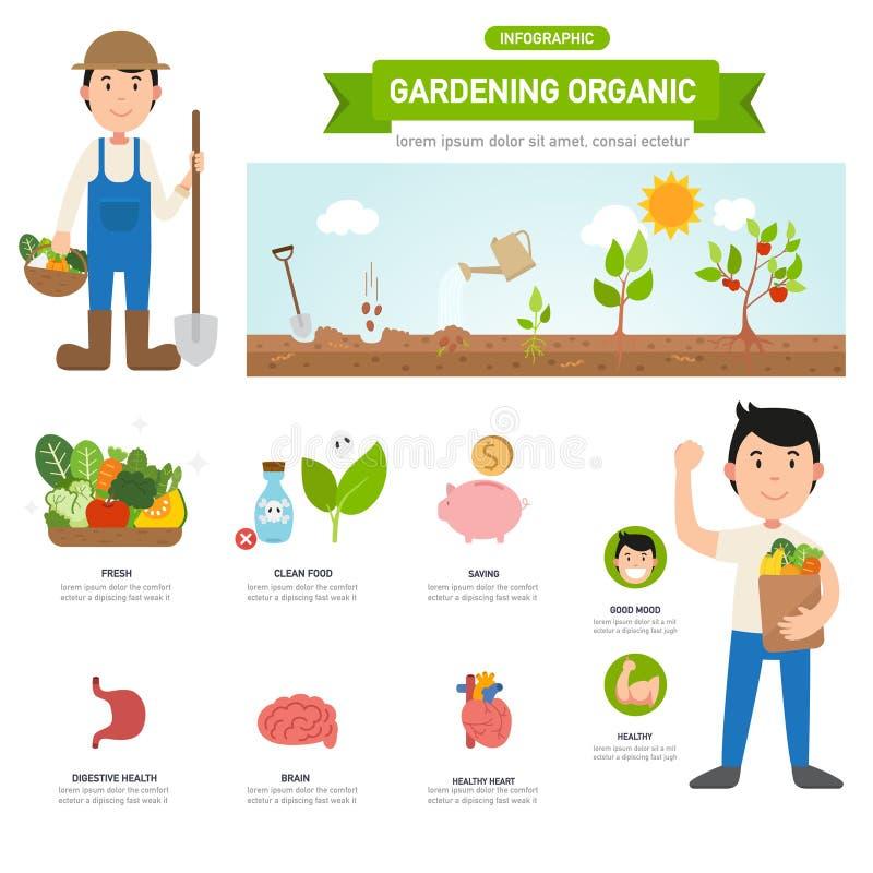 Het tuinieren organische infographic, illustratie royalty-vrije illustratie