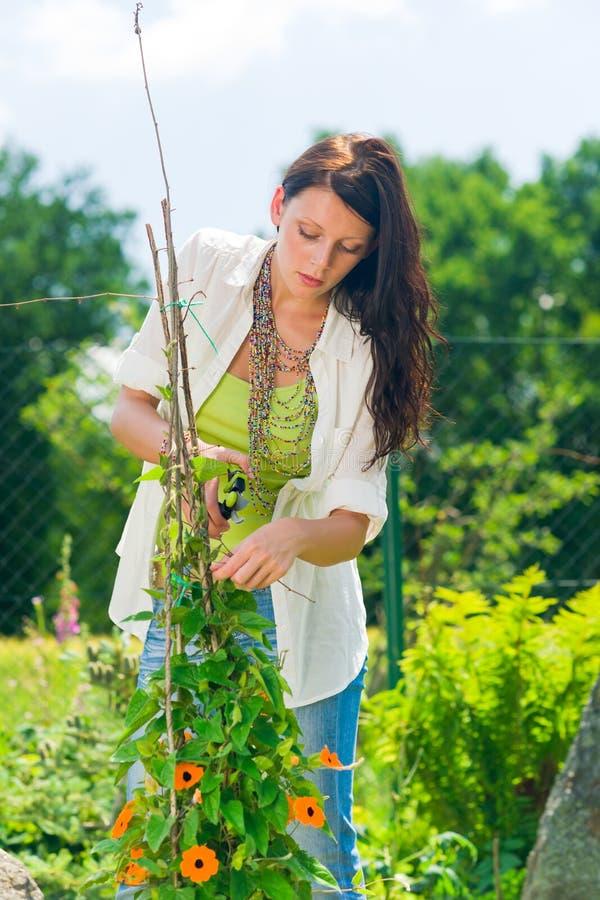 Het tuinieren van de zomer jonge mooie vrouwensnijbloem royalty-vrije stock fotografie