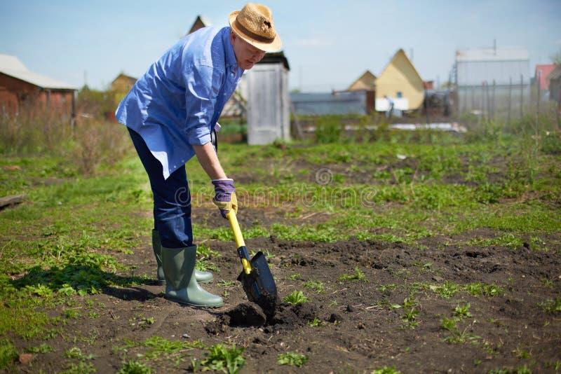 Het tuinwerk stock foto's
