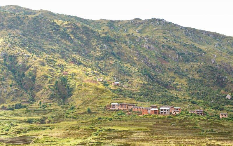 Het typische landschap van Madagascar in gebied dichtbij Ambohimanjaka Terrein met kleine rotsachtige die heuvels met struiken en royalty-vrije stock fotografie