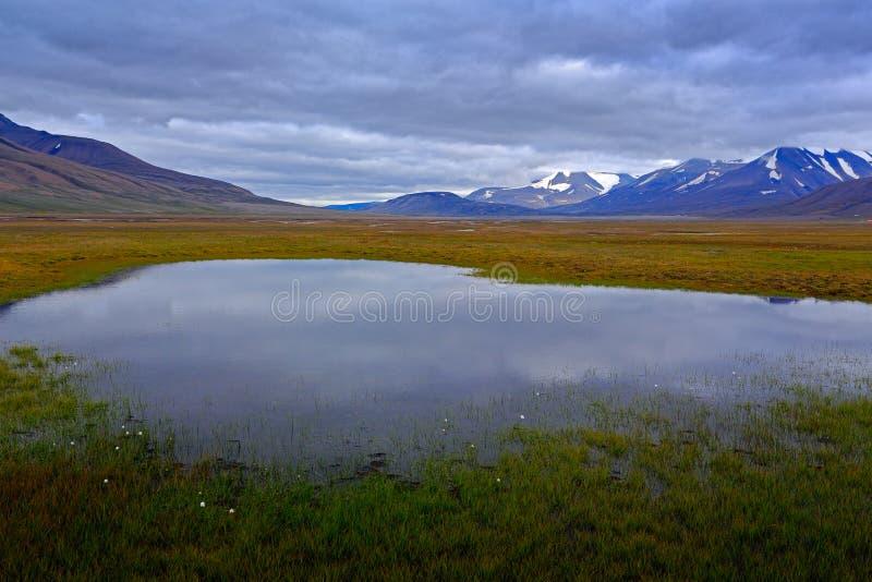Het typische landschap van Noorwegen met meer en berg Landschap dichtbij Longyearbyen, Svalbard Donkere dag in de zomer Grey Clou stock foto's