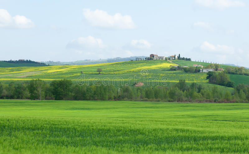 Het typische landschap van Toscanië met mooie heuvels royalty-vrije stock afbeelding