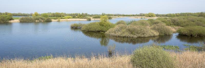 Het typische Nederlandse landschapspanorama met rivier DE Waal, uiterwaarden, vegetatie, water op een heldere zonnige dag royalty-vrije stock fotografie