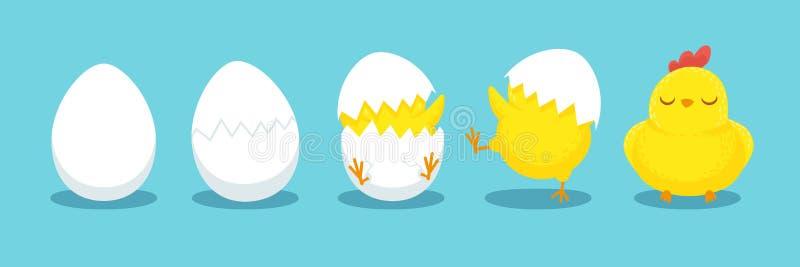 Het uitbroeden van de kip Gebarsten kuikenei, broedseleieren en de uitgebroede Pasen-vectorillustratie van het kuikensbeeldverhaa royalty-vrije illustratie