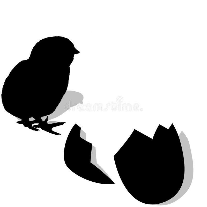 Het uitbroeden van de kip. silhouet vector illustratie