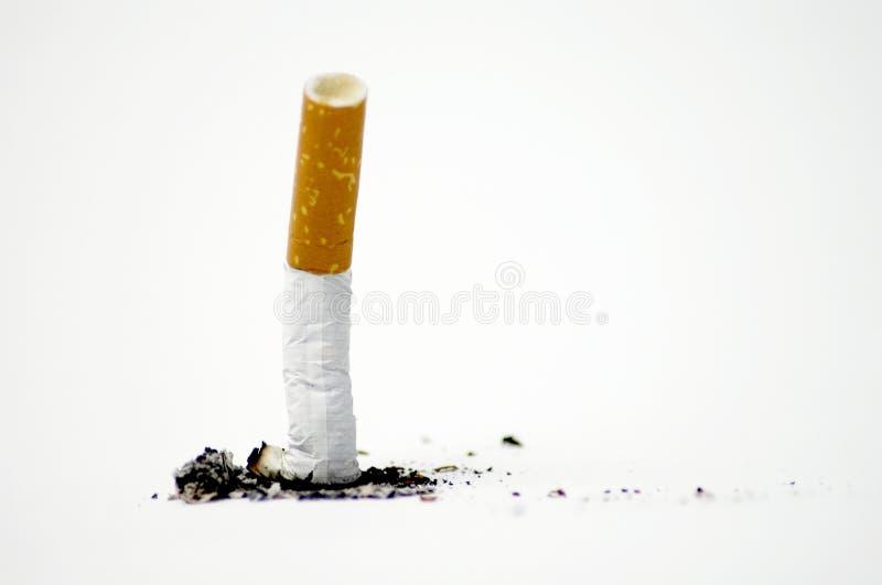 Het uiteinde van de sigaret op wit - Nr dat - rookt stock foto's
