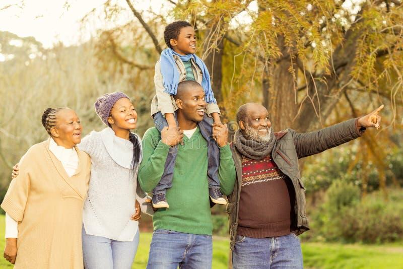 Het uitgebreide familie stellen met warme kleren stock afbeelding