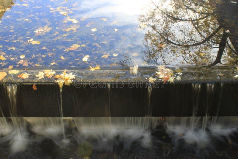 Het uitspoelen van bederf in de herfst stock foto