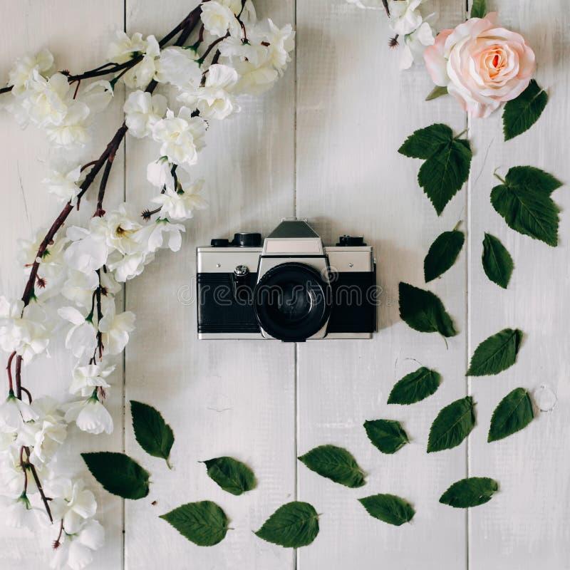 Het uitstekende centrum van de filmcamera, roze sakuratak, nam bloemen en bladeren op het witte houten bureau toe De hoogste vlak stock foto