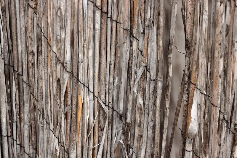 Het uitstekende close-up van de bamboerotan van een dilapidated retro versleten omheining hield met geroeste draad een achtergron royalty-vrije stock fotografie