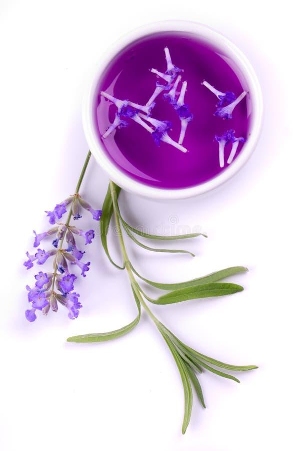 Het uittreksel van de lavendel royalty-vrije stock foto's