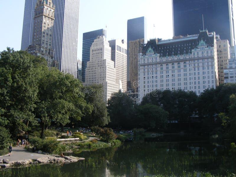 Het Uitzicht van het Central Park stock afbeelding