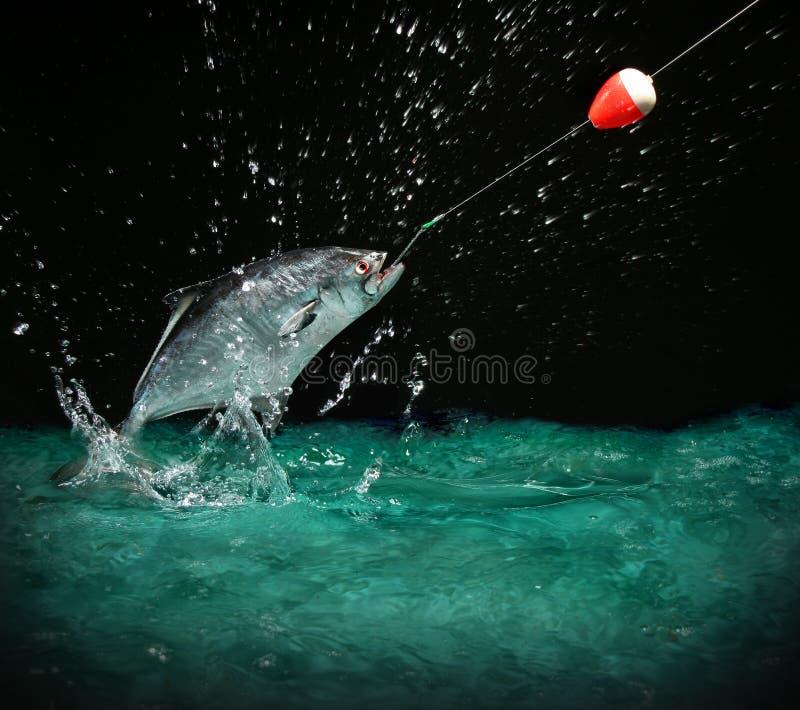 Het vangen van een grote vis bij nacht royalty-vrije stock afbeelding