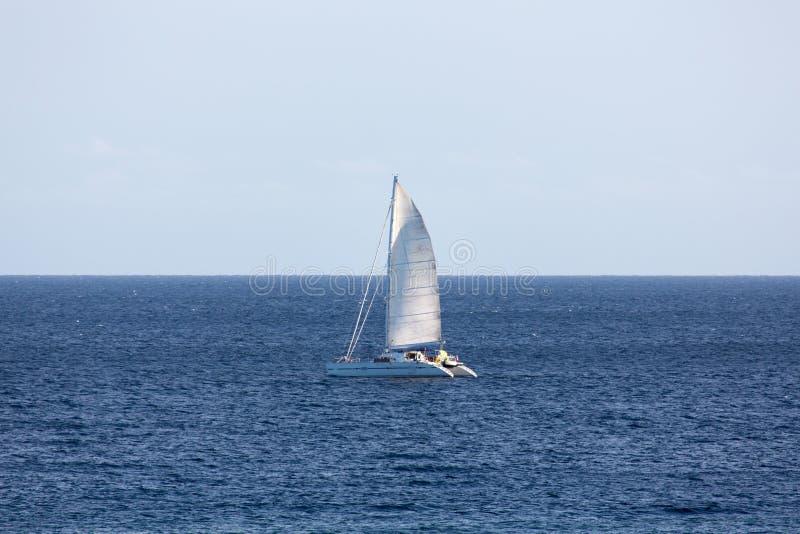Het Varen van de catamaran stock foto