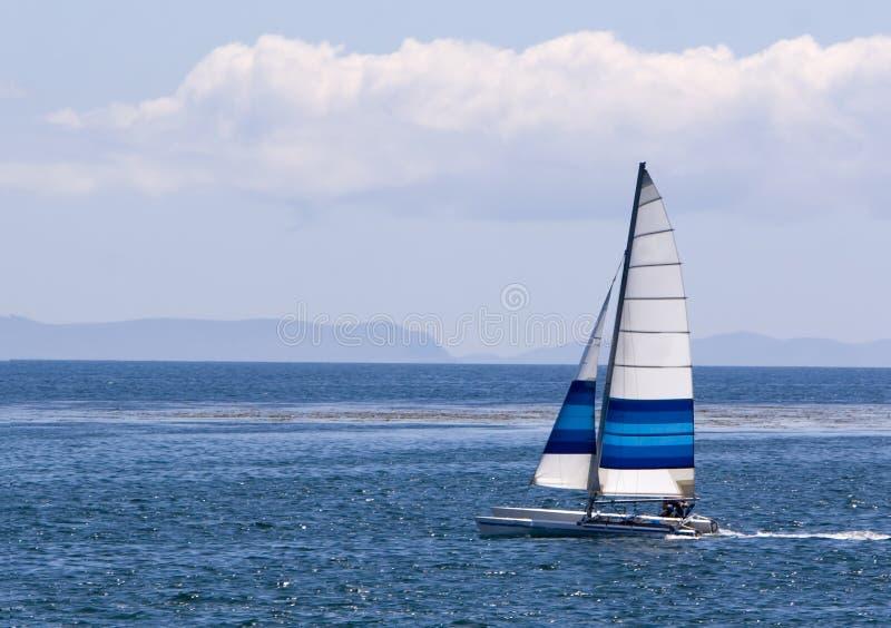 Het Varen van de catamaran royalty-vrije stock foto