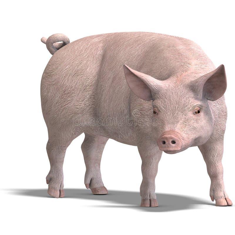 Het varken geeft terug stock illustratie