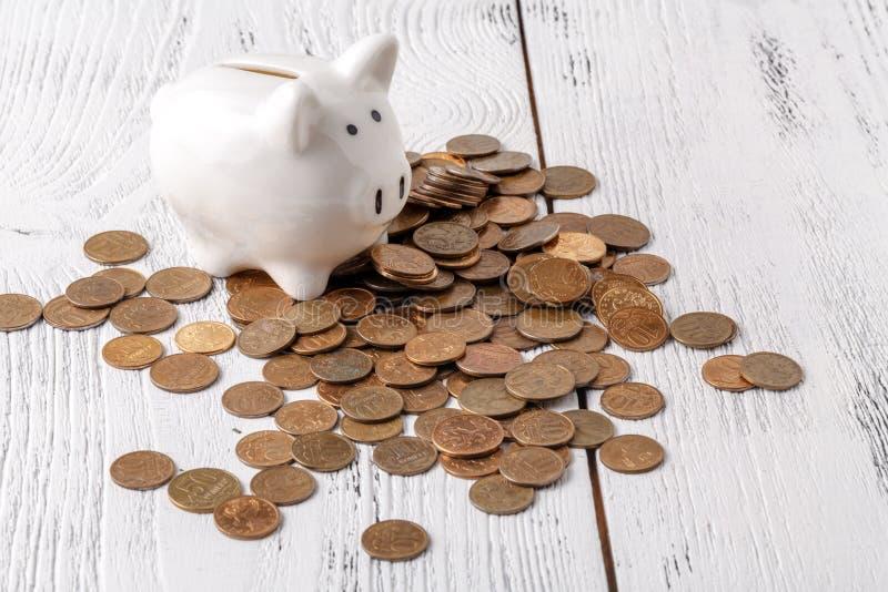 Het varken van de geldspaarder stock fotografie