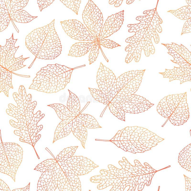 Het vector de herfst naadloze patroon met eik, populier, beuk, esdoorn, esp en paardekastanjebladeren schetst op de witte achterg stock illustratie