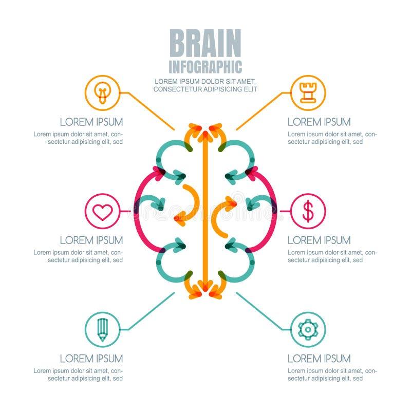 Het vector geplaatste ontwerp en de pictogrammen van herseneninfographics vector illustratie