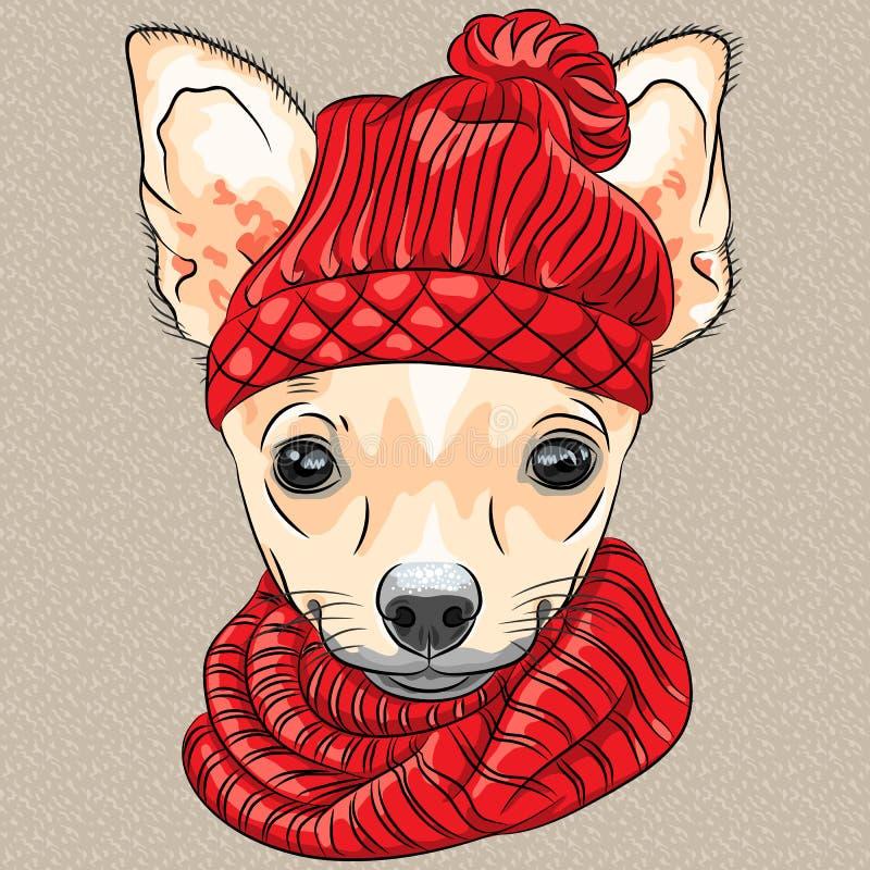 Het vector het ras van Chihuahua van de beeldverhaal hipster hond glimlachen stock illustratie