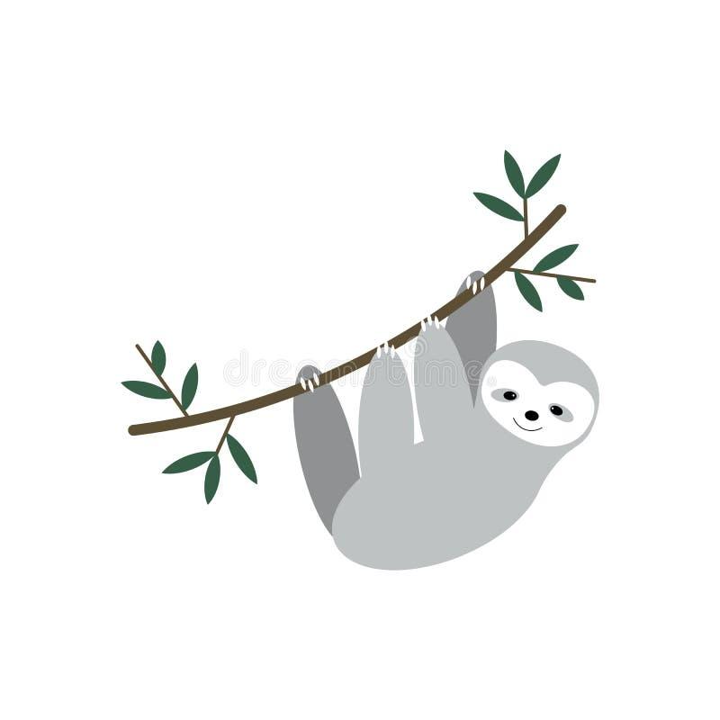 Het vector leuke luiaard hangen op de boom Aanbiddelijk die regenwouddier op witte achtergrond wordt geïsoleerd stock illustratie