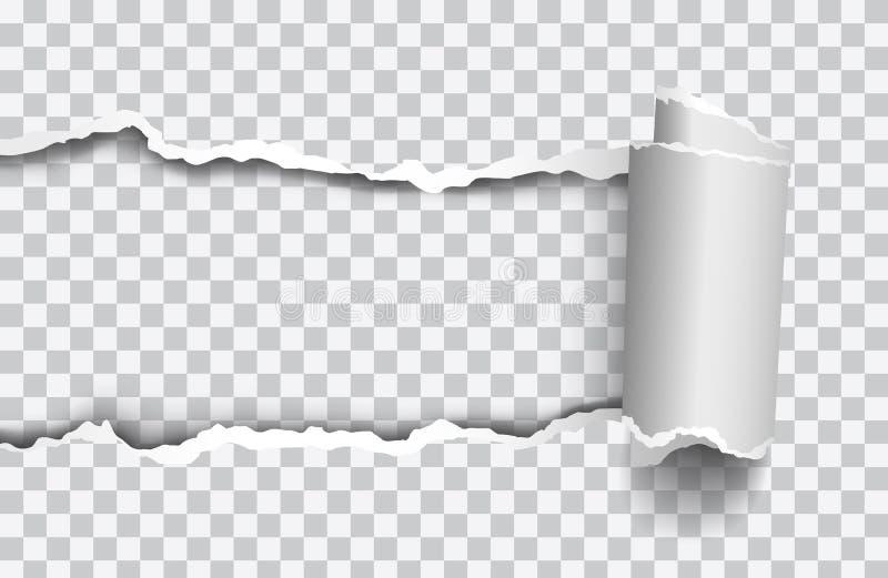 Het vector realistische gescheurde document met rollled rand op transparante achtergrond stock illustratie
