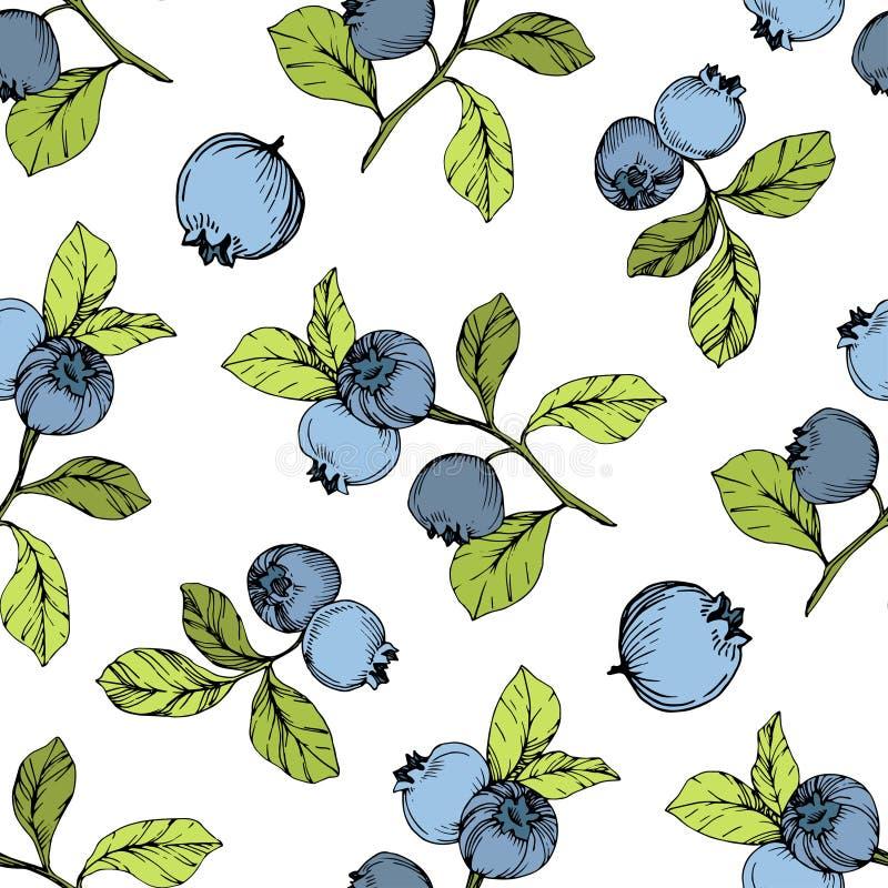 Het vectorart. van de Bosbessen groene en blauwe gegraveerde inkt Bessen en groene bladeren Naadloos patroon als achtergrond royalty-vrije illustratie