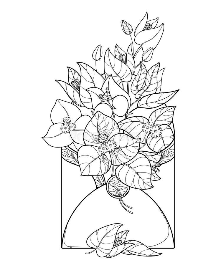 Het vectorboeket van overzichtsbougainvillea of Buganvilla-de bloem bundelt met knop en blad in open die envelop in zwarte op wit stock illustratie