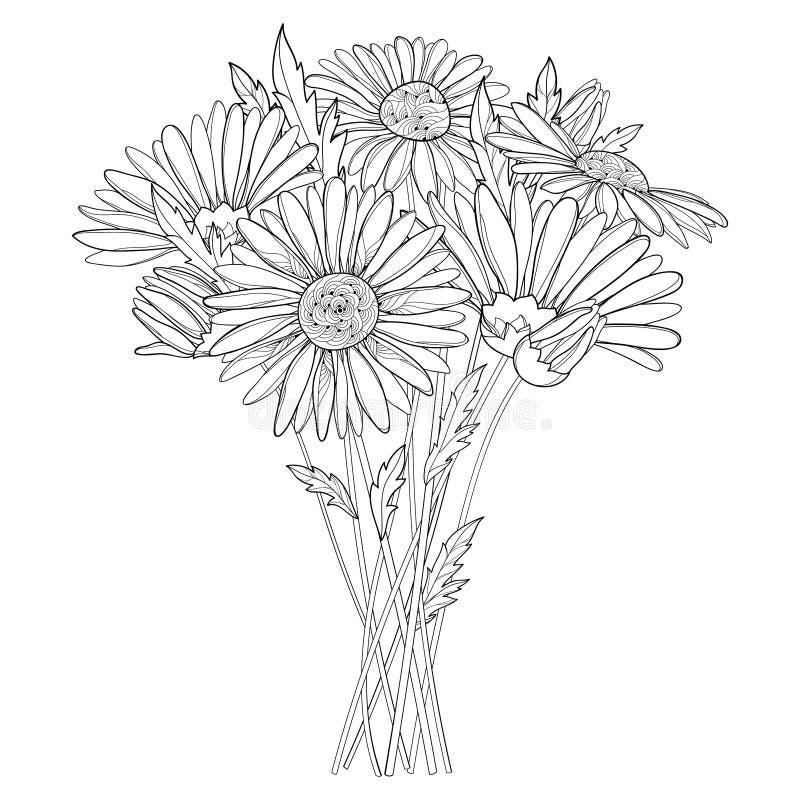 Het vectordieboeket met overzichtskamille bloeit, knop en blad op witte achtergrond wordt geïsoleerd Overladen Kamilles in contou royalty-vrije illustratie
