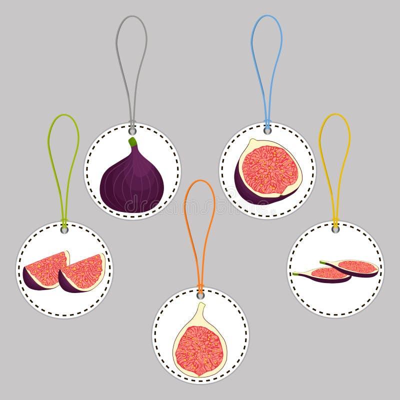 Het vectorembleem van de pictogramillustratie voor geheel rijp fruit purper fig. stock illustratie