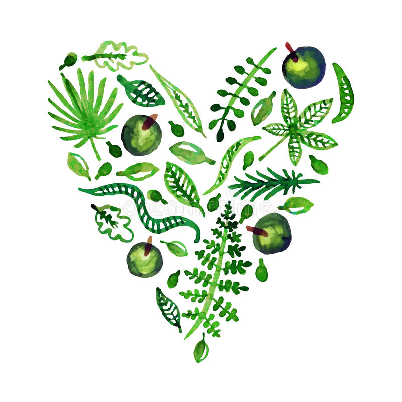 Het vectorhart van de waterverfaard met (groene) bladeren, appelen en andere installaties Perfectioneer voor uitnodigingen en and stock illustratie