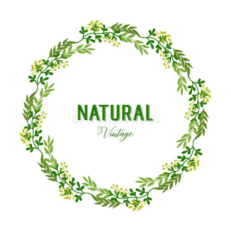 Het vectorkader van de illustratie elegante groene bladbloem met natuurlijke uitstekende malplaatjes royalty-vrije illustratie