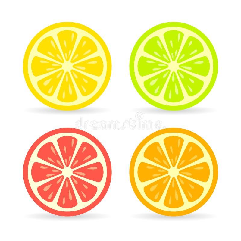 Het vectorpictogram van de citrusvruchtenplak vector illustratie