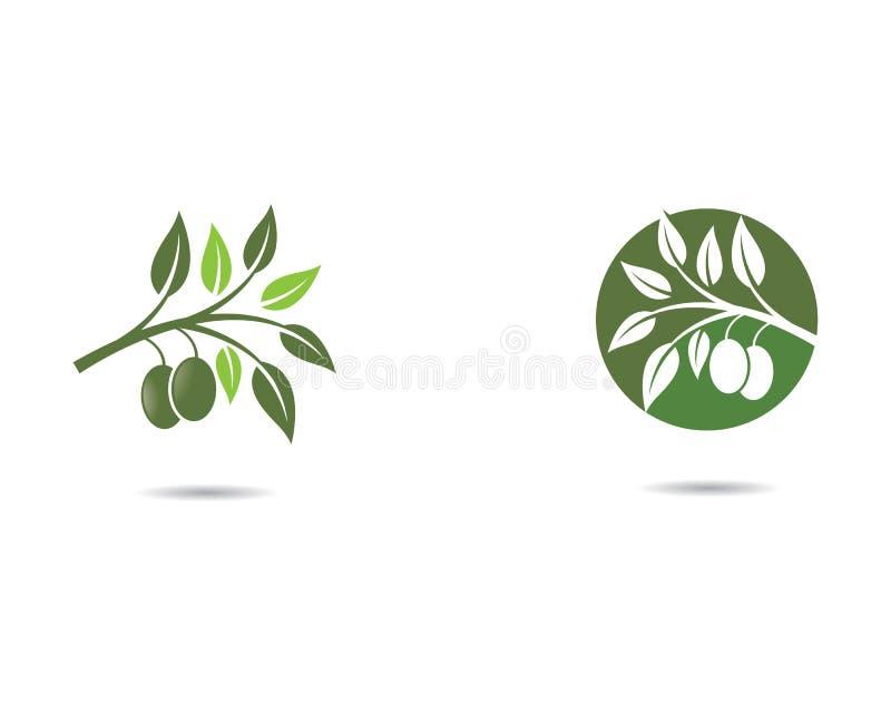 Het vectorpictogram van het olijfolieembleem stock illustratie