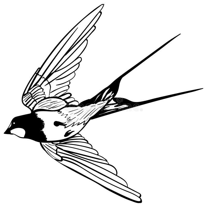 Het vectorsilhouet die slikt vliegen stock illustratie