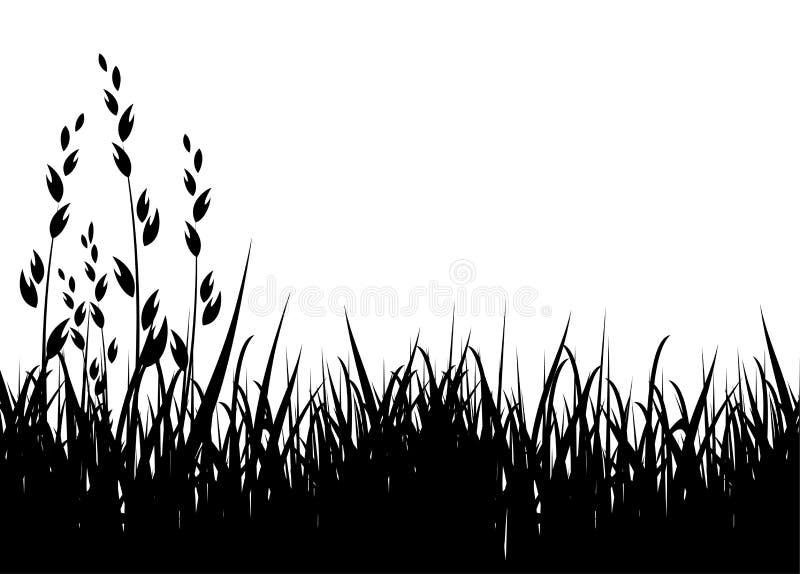 Het vectorsilhouet van het gras vector illustratie