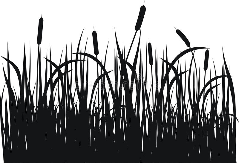 Het vectorsilhouet van het gras stock illustratie