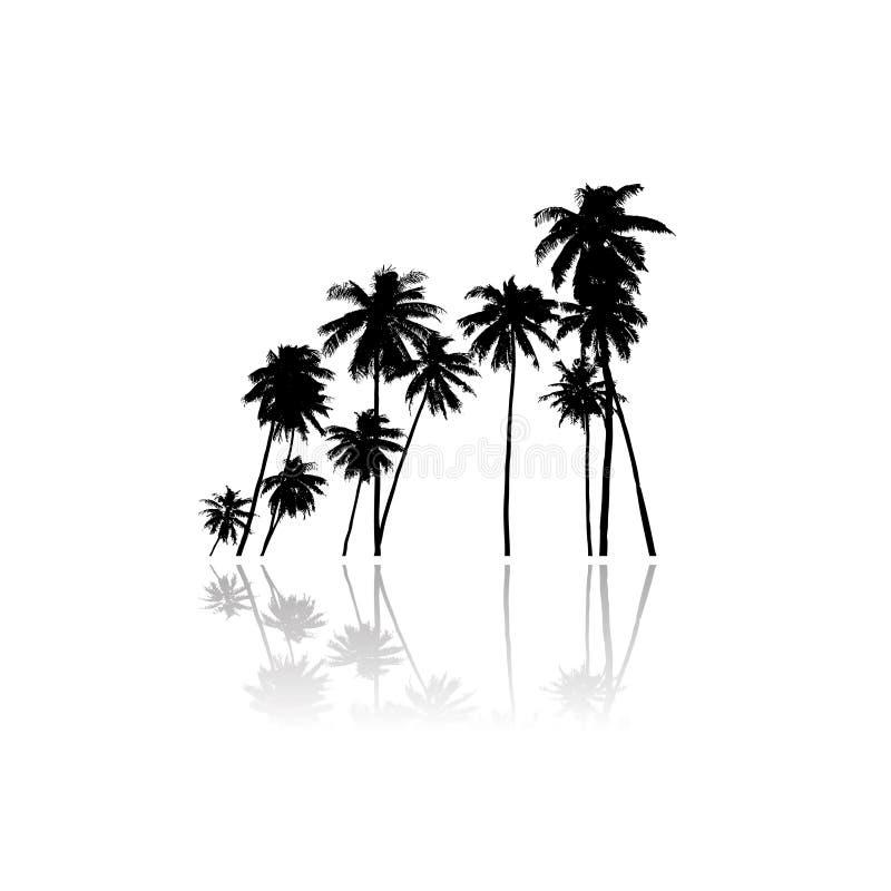 Het vectorsilhouet van palmen stock illustratie