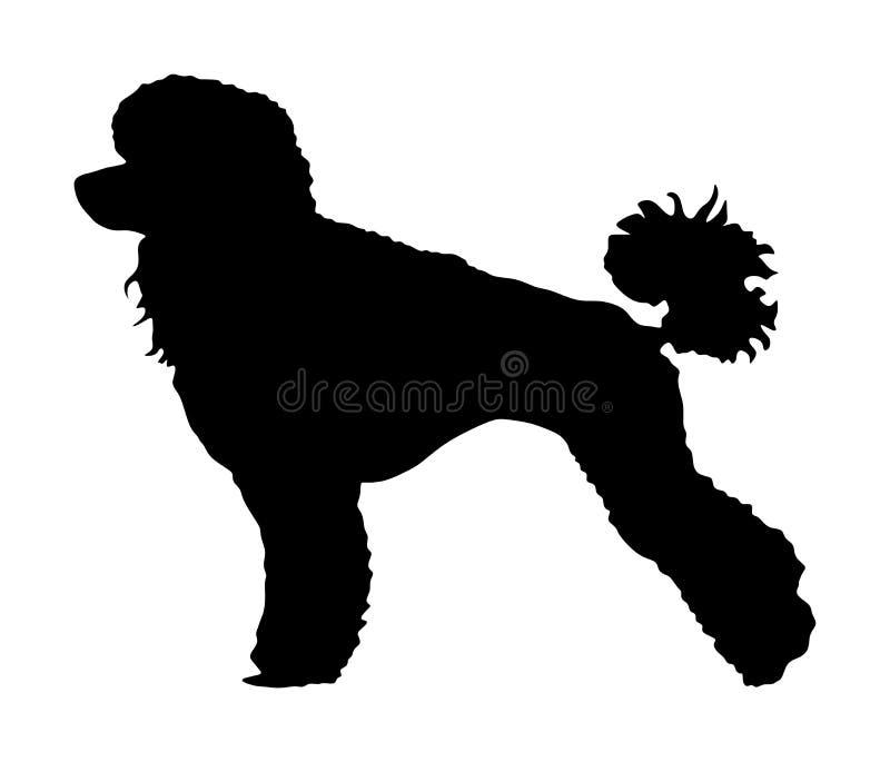 Het vectorsilhouet van Toy Poodle Portret van Koninklijk Poedel vectorsilhouet Franse zwarte poedel stock illustratie