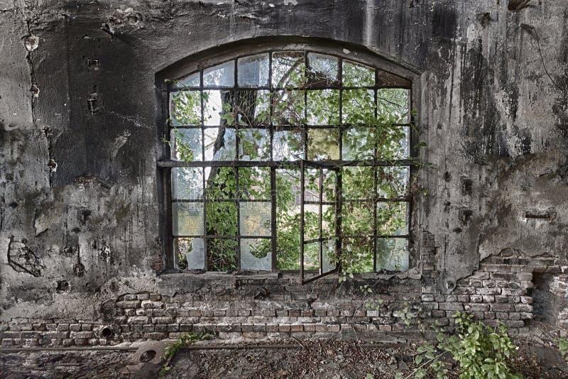 Het venster stock foto