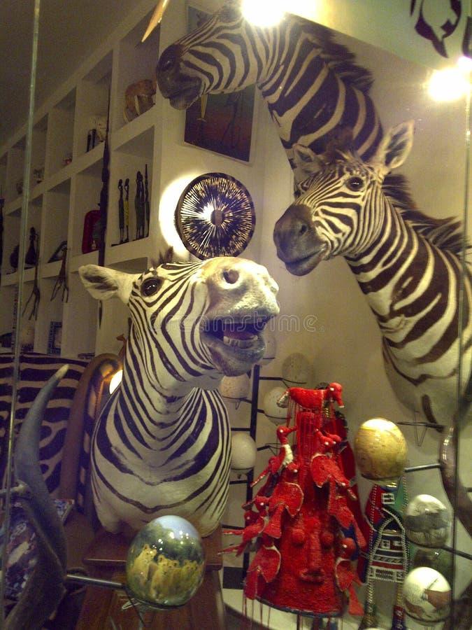 Het venster van de herinneringswinkel met gestreepte hoofden en struisvogeleieren royalty-vrije stock foto's