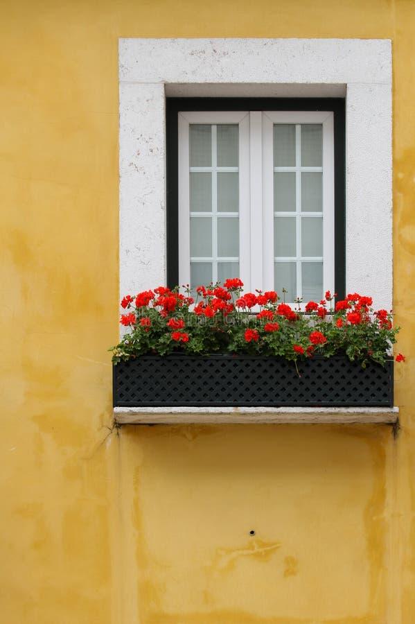 Het venster van Lissabon stock afbeelding
