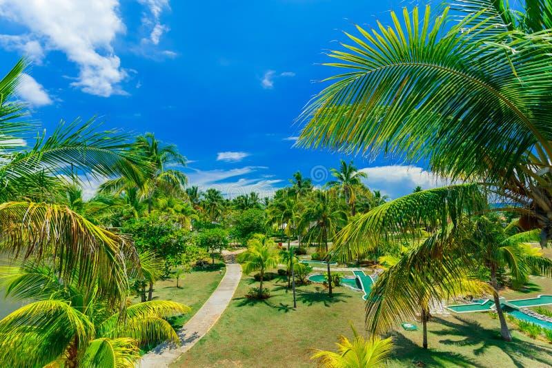 Het verbazen, het uitnodigen mooie mening van tropische tuin bij het Cubaanse eiland van cayococo royalty-vrije stock foto's