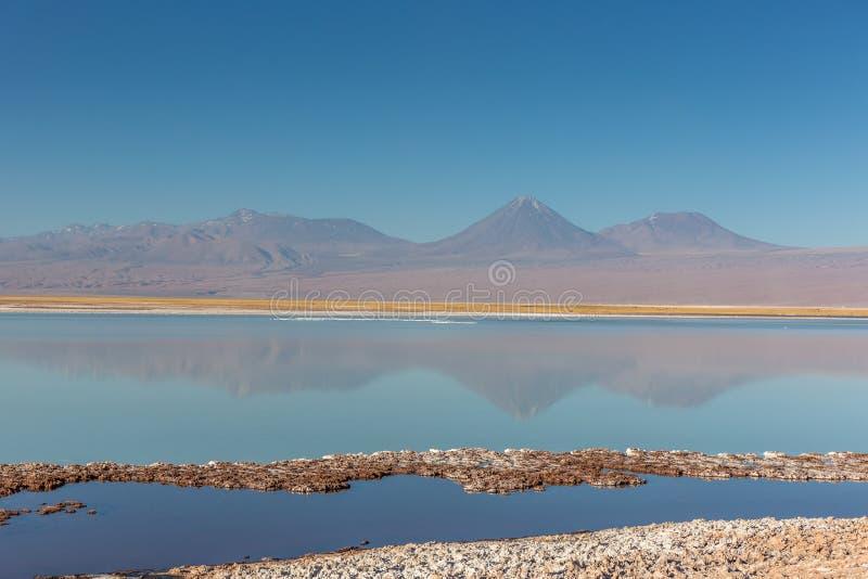 Het verbazende landschap van Atacama Salar, zout in de vloer, vulkaan op de achtergrond, blauwe hemel, waterbezinning royalty-vrije stock fotografie