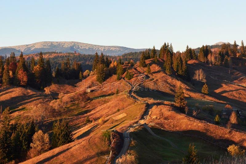 Het verbazende landschap van de de herfstochtend in bergen met weide en kleurrijke bomen op underfoot voorgrond en mist genatural stock afbeelding